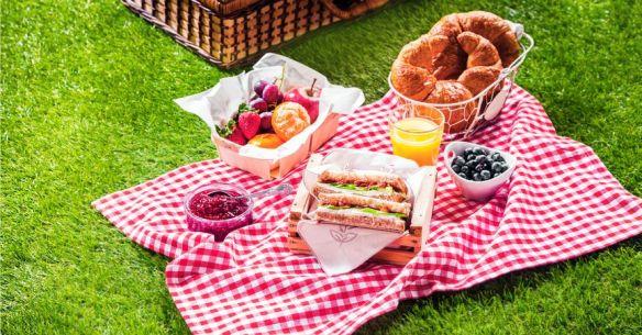 picnic_fb[1]
